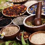 טיפול צמחי למגוון מחלות של הגוף והנפש
